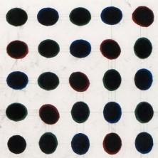 Zwarte punten veld (1/3) - Ton van der Laaken
