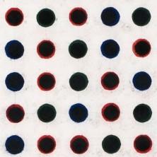 Zwarte punten veld (2/3) - Ton van der Laaken