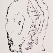 Schwartzkopf (10/12) - Frank van den Broeck