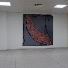 DSCN8708