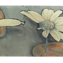 H. Walraven bloem