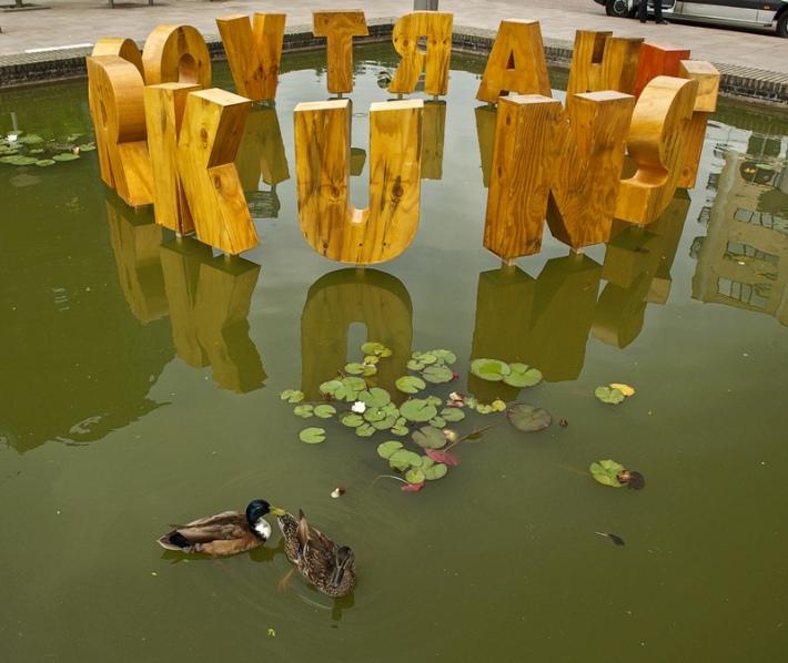 Hart voor Kunst, beeld van Arno Arts in de vijver van Rijnstate   fotografie VVBfoto