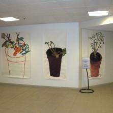 tentoonstelling in Rijnstate